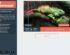 Como optimizar imágenes para web, blog y tienda online